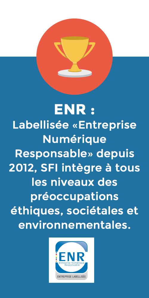 SFI Entreprise Numérique